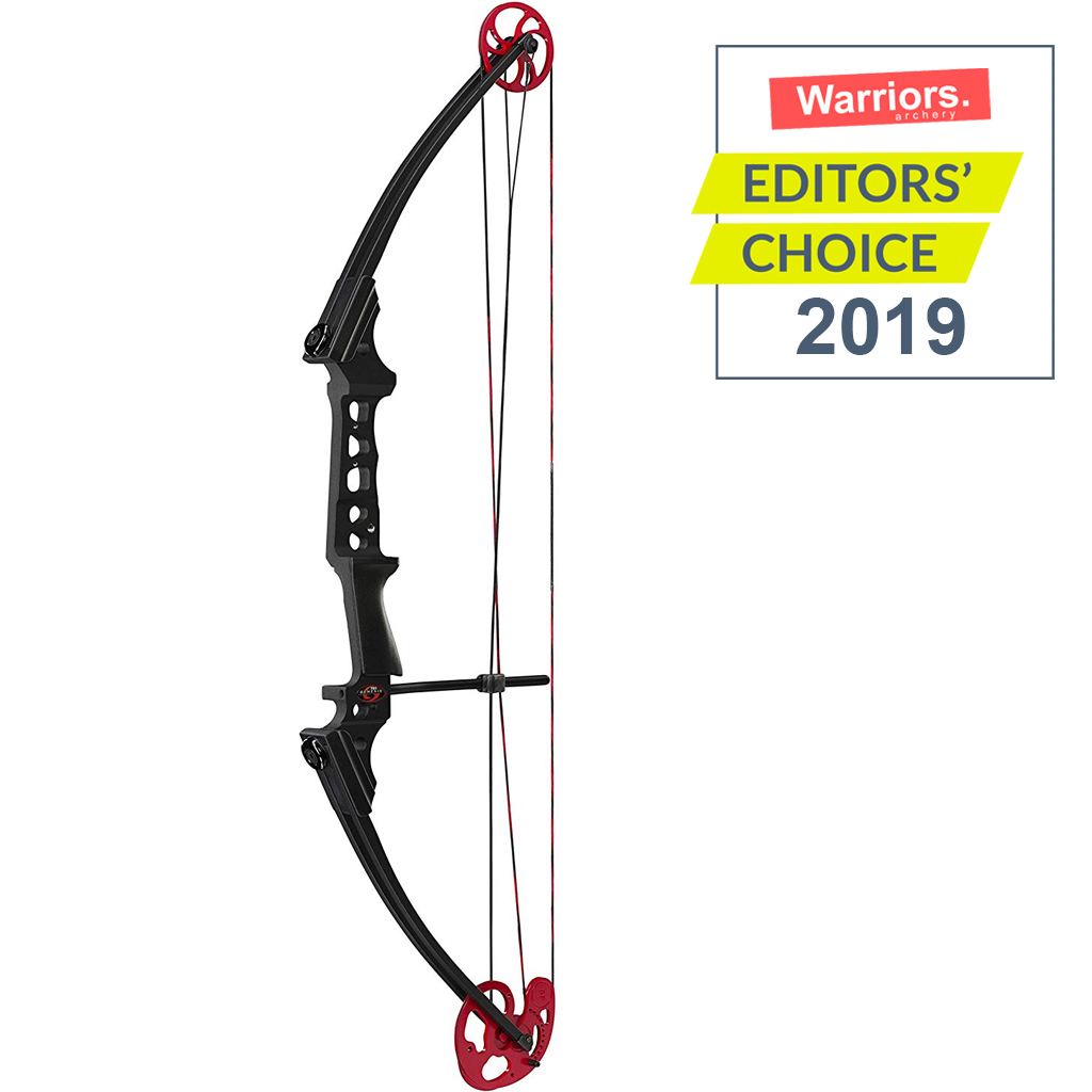 best compound bow target shooting