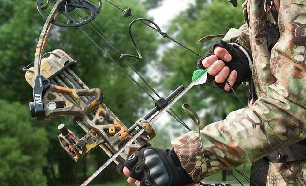 Best Compound Bow Under $300